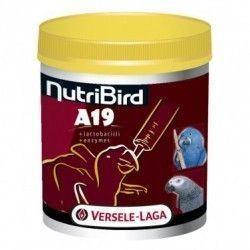 Nutri Bird A19- papilla