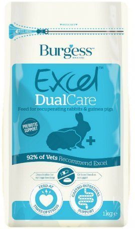 Burgess Excel Dual Care